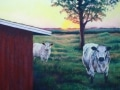 11-Roeing_Country-Evening