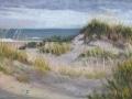 2-Roeing_Beach-Walk