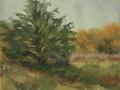3.-McIntosh_Pastures-Edge