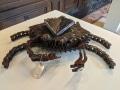 Bottom Feeder (Crab)