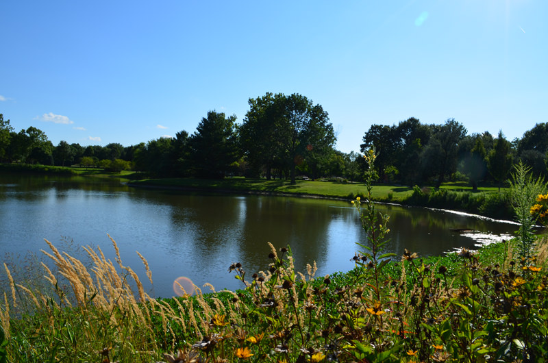Mattis Park