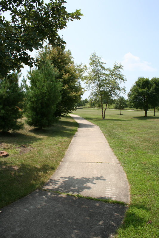 Robeson Meadows WestTrail