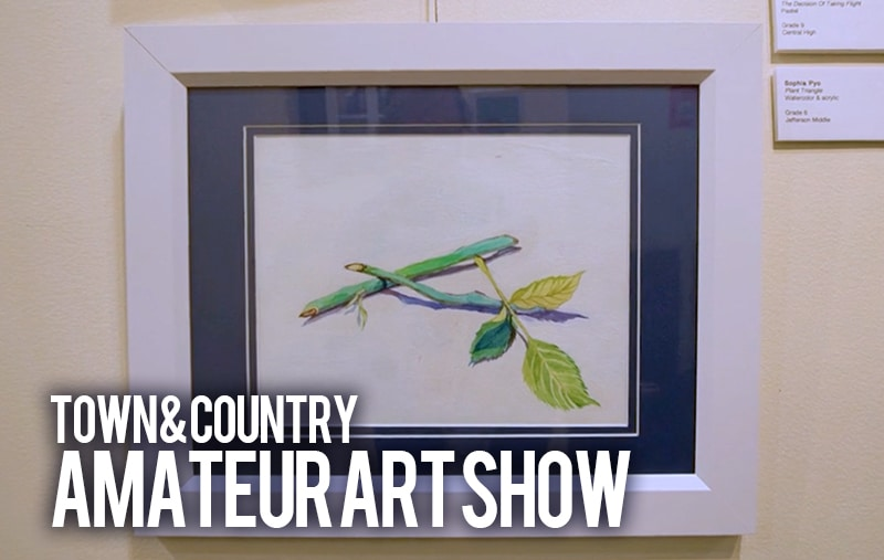 Town & Country Amateur Art Show over drawing of 2 bamboo springs laying across each other
