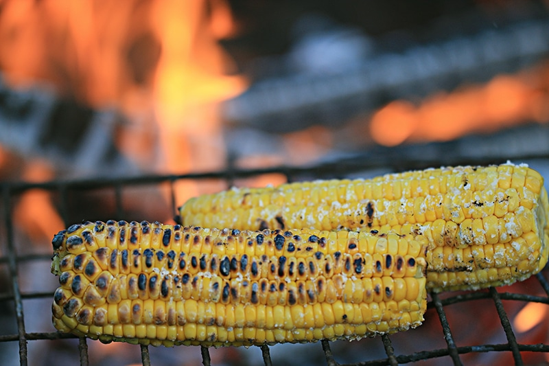 corn grill with nice dark char on ear of corn