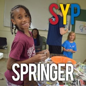 SYP at Springer