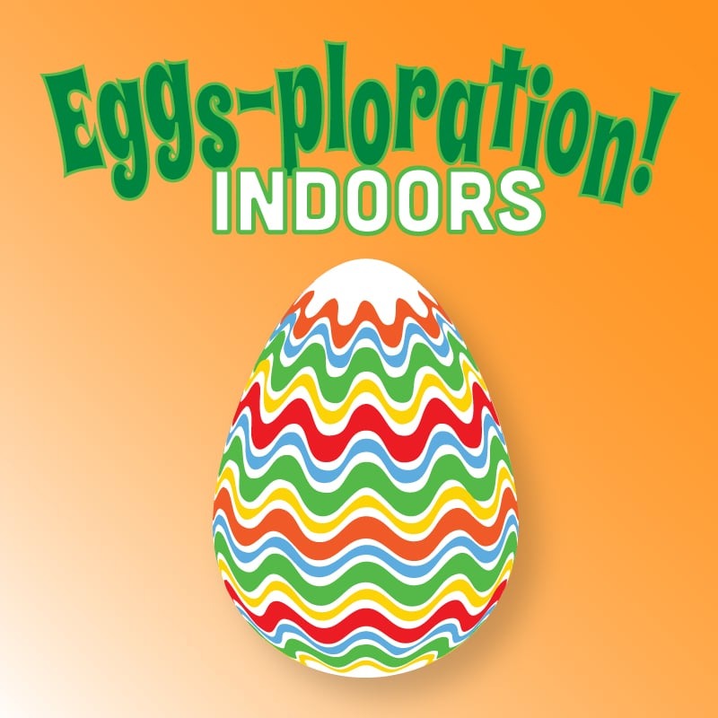 Eggs-ploration! Indoors